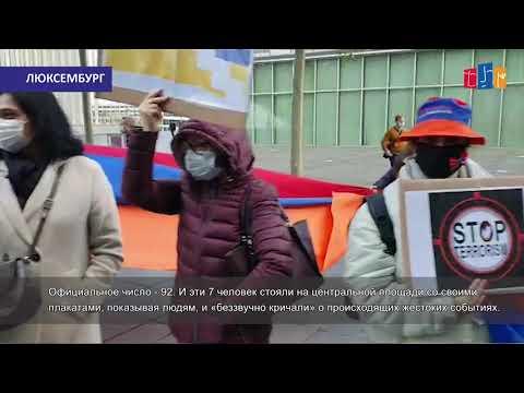«Диаспора твёрдо стоит рядом с народом Арцаха» Акция протеста армян Люксембурга