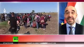 Официальный представитель правительства Венгрии: Брюссель создаёт опасный прецедент