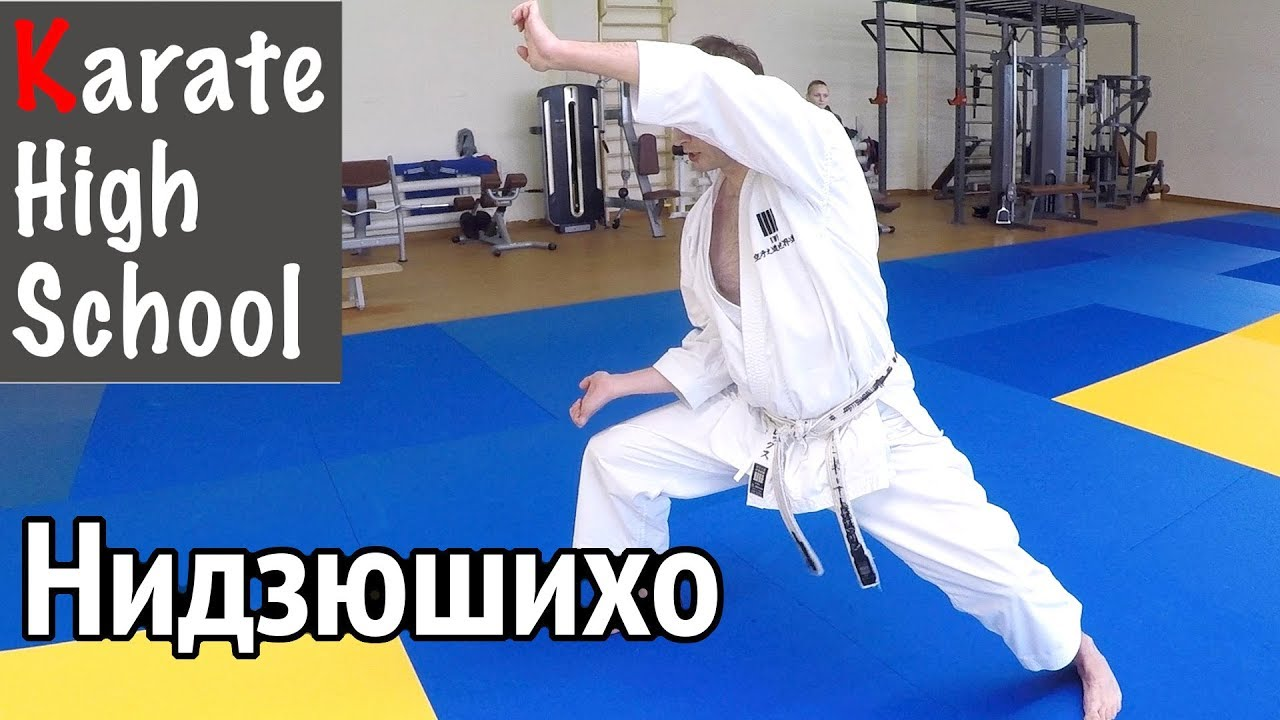 Download Shotokan Kata: Nijushiho (KWF Standard) by Alex Chichvarin