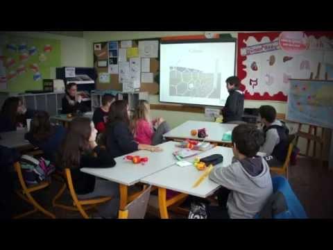 Costeas - Geitonas IB World School