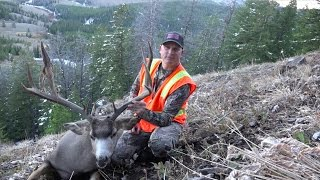 2016 Wyoming Mule Deer Hunt