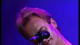 Sting      -Why Should I Cry For You?   -Be Still My Beating Heart