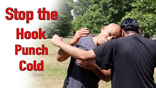 Stop the hook punch cold - wing chun street fight