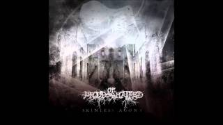 Brood Of Hatred - The Singularity Is Near
