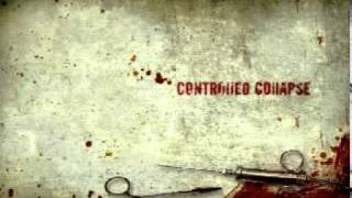 Watch Controlled Collapse Memory Of The Past video