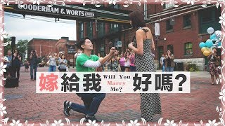 嫁給我,好嗎?| Will you marry me?