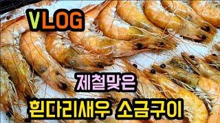 ( vlog )제철맞은 흰다리새우 구이 요리/요리브이로…