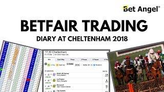 Peter Webb - Bet Angel - Cheltenham Betfair trading diary