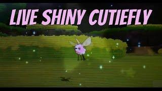 live shiny cutiefly 300 sos encounters sun and moon hype