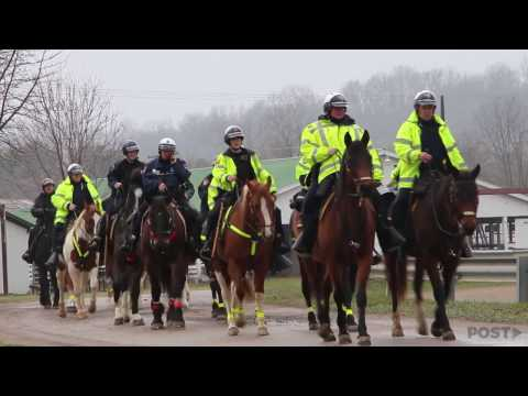 A Day with the Athens Police Department's Mounted Unit