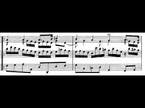 J.S. Bach - BWV 638 - Es ist das Heil uns kommen her