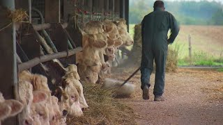French farmers protest as food price talks reach crunch stage