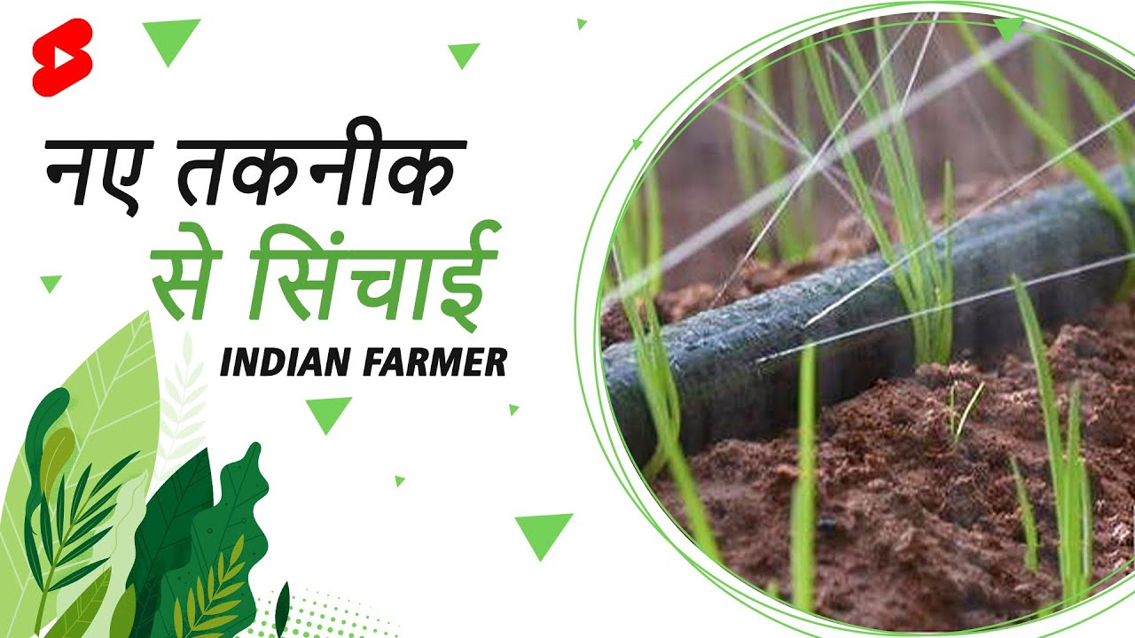लेजर का इस्तेमाल करके खेत में सिचाई   Indian Farmer   #Shorts