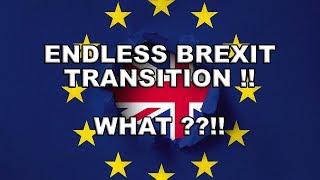 Theresa May wants a Longer EU Transition period!