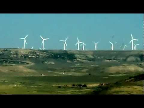 6000 Birds Die Everyday With These Wind Generators