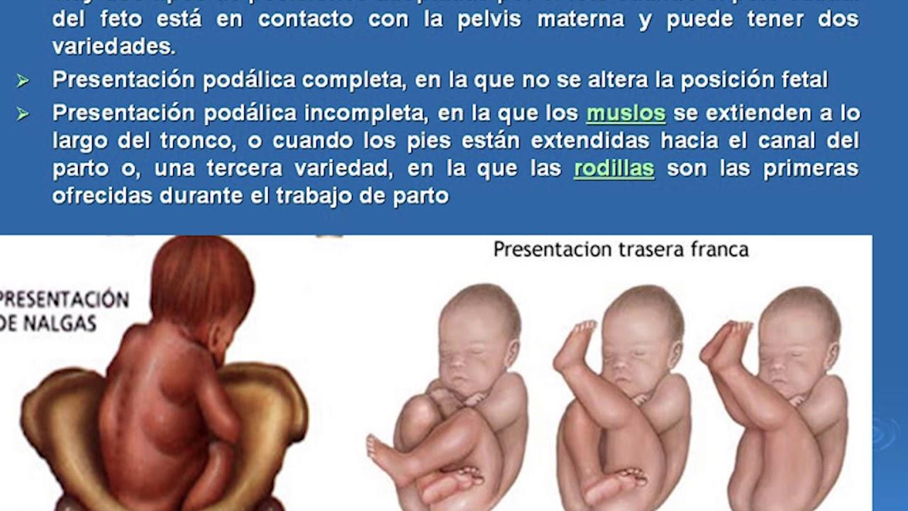 2. Anatomía y fisiología materna - YouTube