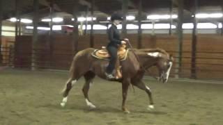 Ellie Becker, Horsemanship Schooling, no stirrups
