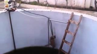 Sinister Cat Pushes Other Cat In Pool and Gets Instant Karma