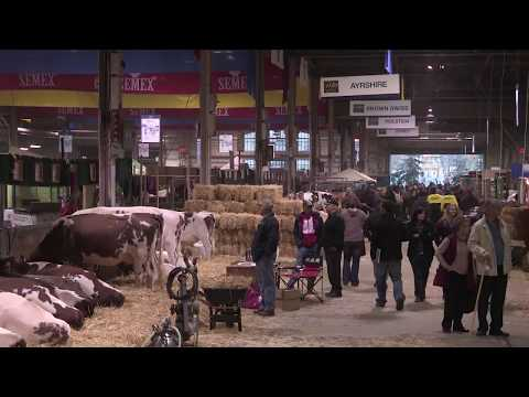 New Royal Agricultural Winter Fair video includes footage not seen in more than five decades