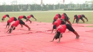 a m world school sports day yoga