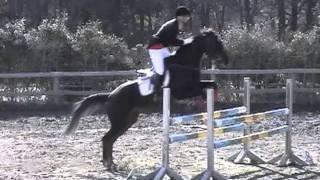 この馬が今月(2019/04)死んだ事を知った。1996年4月12日生まれの23歳。 ...