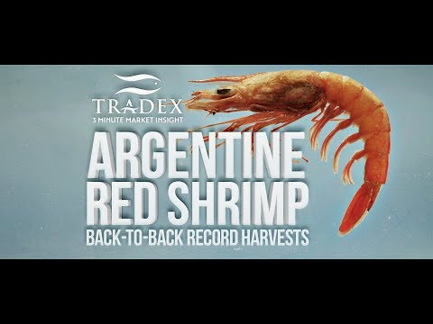 3MMI - Record High Argentine Red Shrimp Harvest Getting More N.A. Buyer Attention