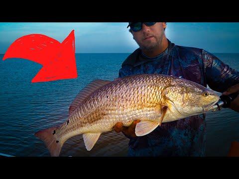 Catching BIG Texas Redfish - Redfish School Fishing - Texas Bayfishing - How To Catch Redfish