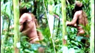 5-most-amazing-jungle-discoveries-recently-made