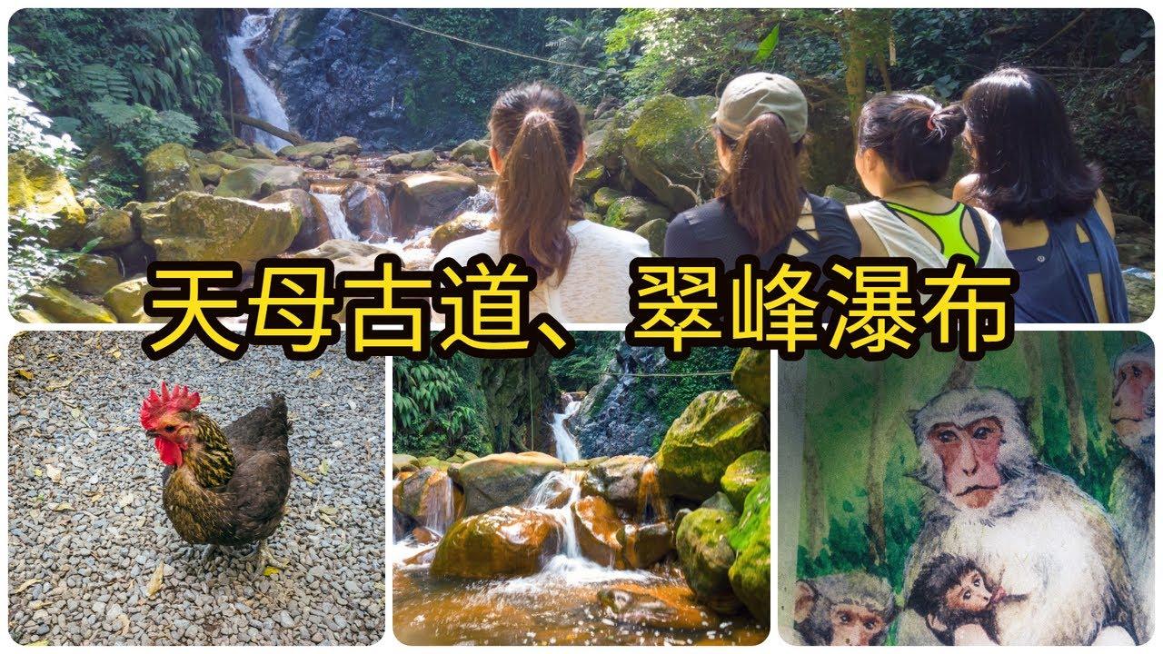 【天母古道】水管路步道、翠峰瀑布減肥瘦身找獼猴 | 台北北投登山健行交通攻略 | 4K | Taipei Travel