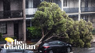 nsw-floods-and-weather-a-weekend-of-rainfall-sparks-havoc