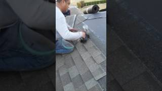 Mello roofing y pantrito fajardo con terco, puro espinal veracruz en san Antonio tx