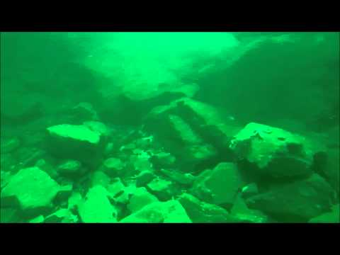 Diving with a seal in Quilty Co Clare