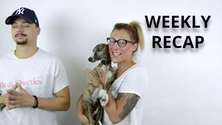 Release Weekly Recap 8. díl!