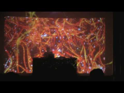 FLYING LOTUS - PAY ATTENTION GHOST IN THE SHELL - LIVE @ FOX THEATER - 9.15.2016