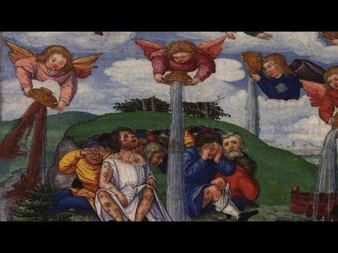 88: Revelation Chs. 15-16 7 Chalices of Wrath (Catholic Apocalypse Part 10)