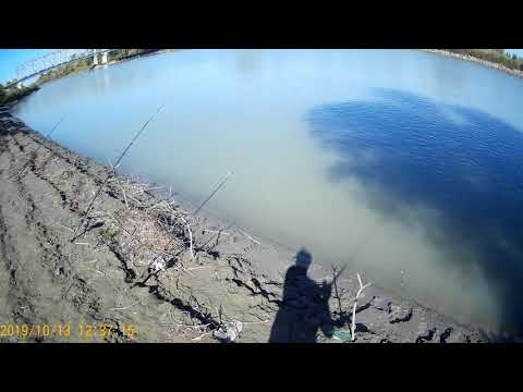 Река Протока, Славянск на Кубани рыбалка, сом