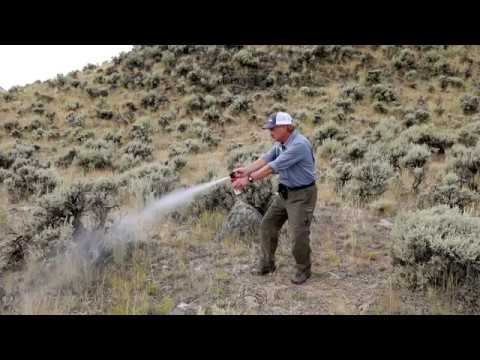Bear Spray Demonstration and Safety Tips