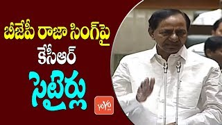 CM KCR Satires On BJP Raja Singh In Telangana Assembly | Harish Rao