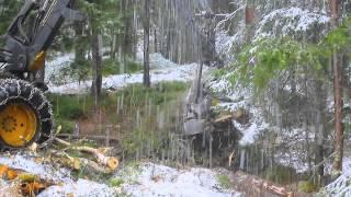 Forestry Tree Harvester