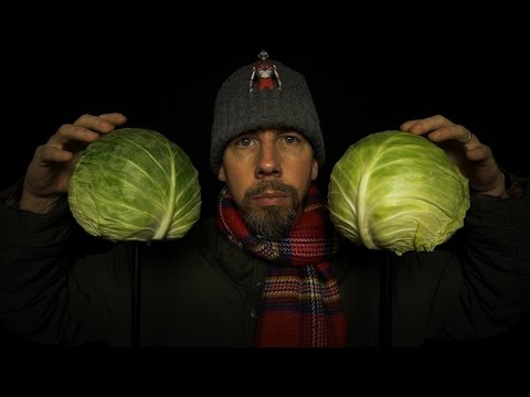 Binaural Cabbage Microphones [ VegeTech ASMR ]