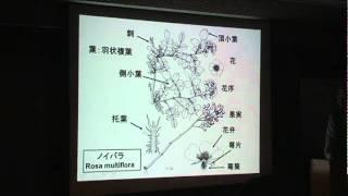 大場秀章先生(日本植物友の会会長)花のサロン講演-1.MPG