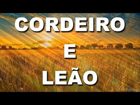 Cordeiro e Leão - Central Music (Letra)