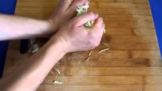 Рецепт приготовления вегетарианского рассольника  в суповарке VITEK VT-2620 ST