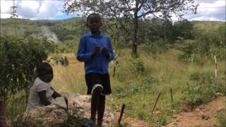 DFID-funded mine clearance in Chivere Village, Zimbabwe