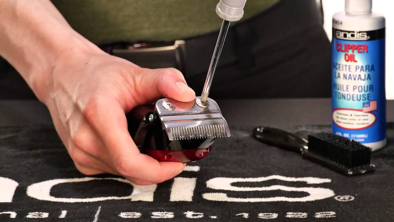 hight resolution of basic clipper maintenance blade replacement alignment