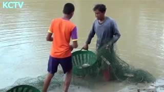 วิธีการเลี้ยงปลาขาย