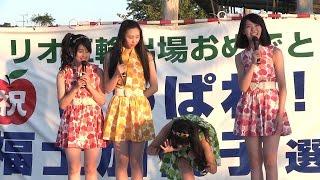 りんご灯まつり花火大会 (板柳町 岩木川河川公園 18:00)