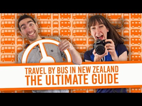 Travel By Bus in New Zealand: The Ultimate Guide