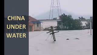 China's Flood and Locust Problems Worsen (1023)