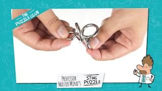 The Puzzle Club - Professor Master Mind